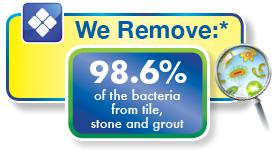 Chem-Dry removes bacteria from carpets