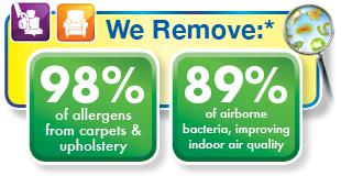Chem-Dry removes allergens and bacteria